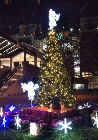 ワールドポーターズのクリスマスツリー