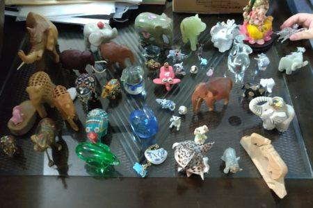 象のコレクション